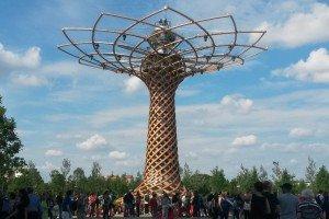 Expo - albero